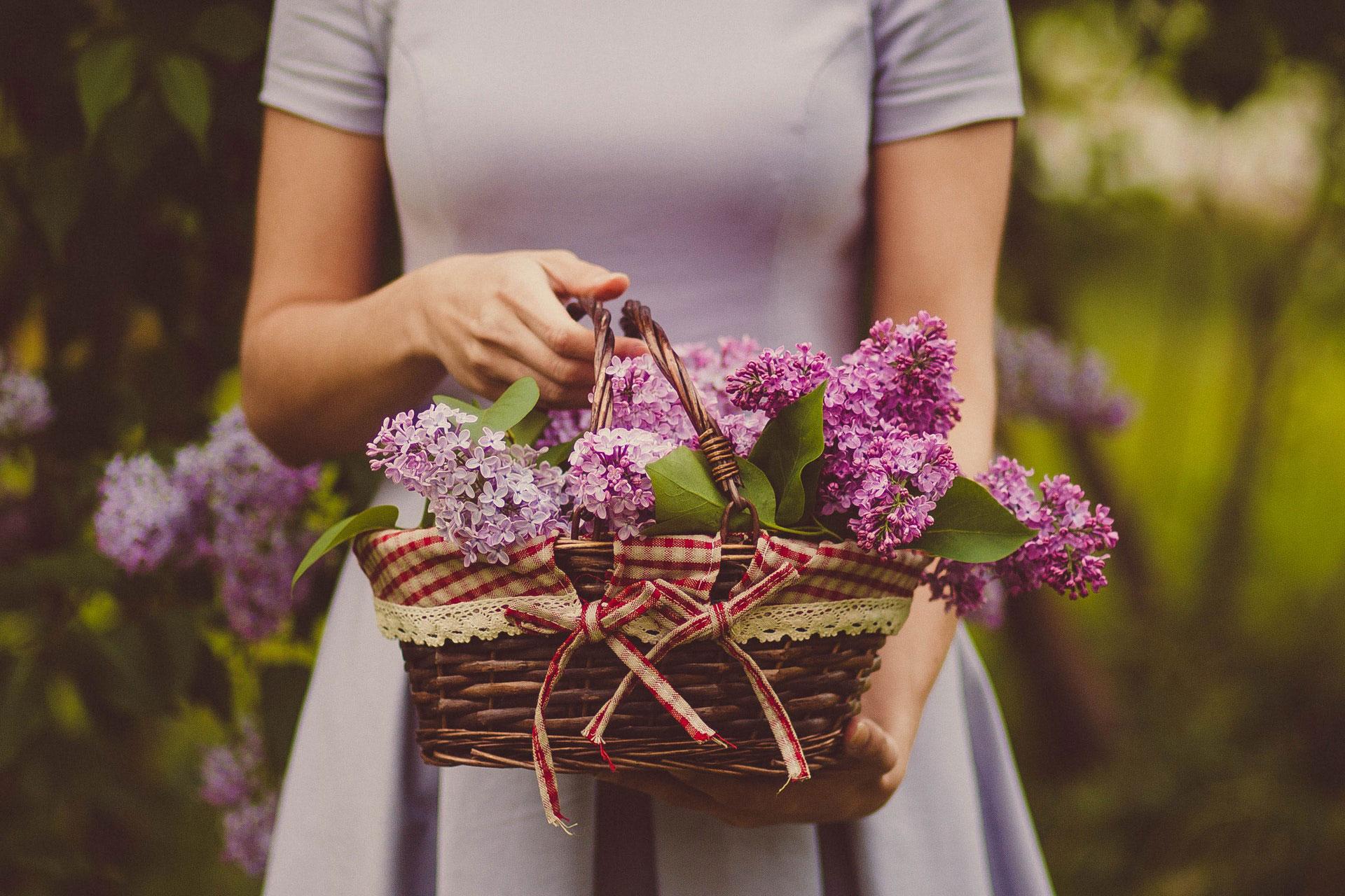 chelsea-flower-show-chauffeur